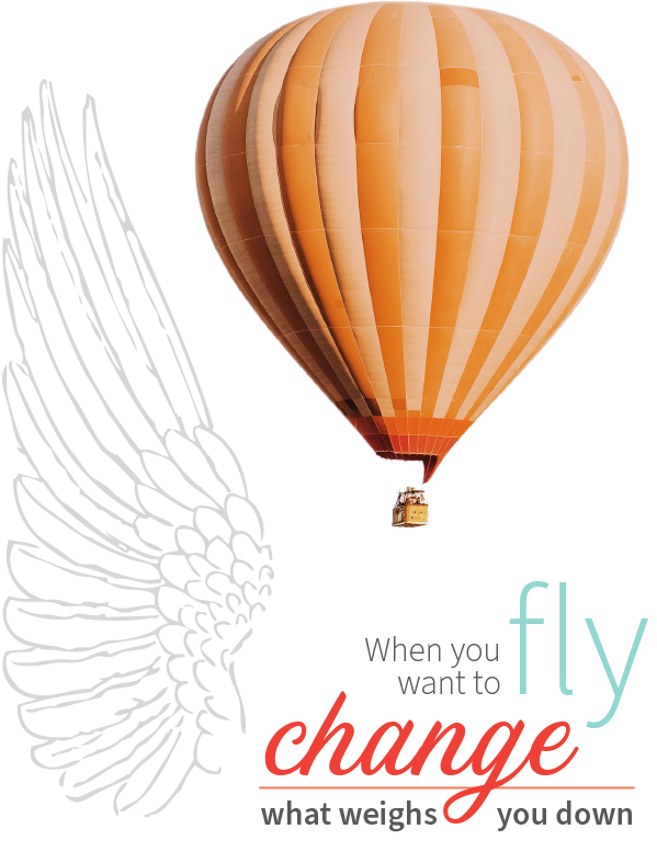 Original Ginger Wings of Change - marketing consulting